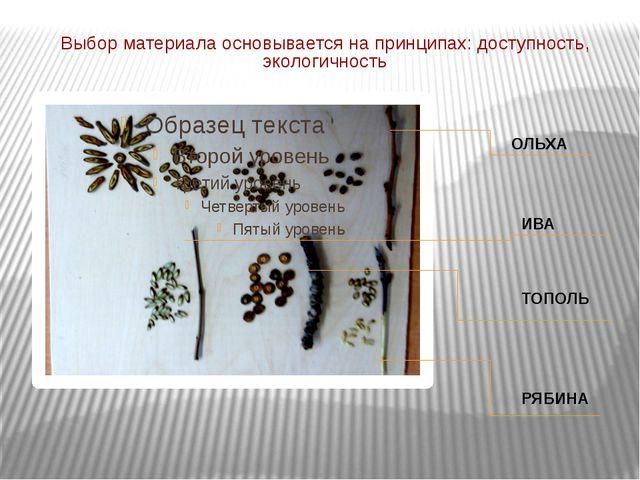 Выбор материала основывается на принципах: доступность, экологичность ОЛЬХА И...
