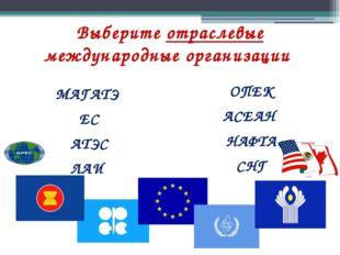 Выберите отраслевые международные организации МАГАТЭ ЕС АТЭС ЛАИ ОПЕК АСЕАН Н