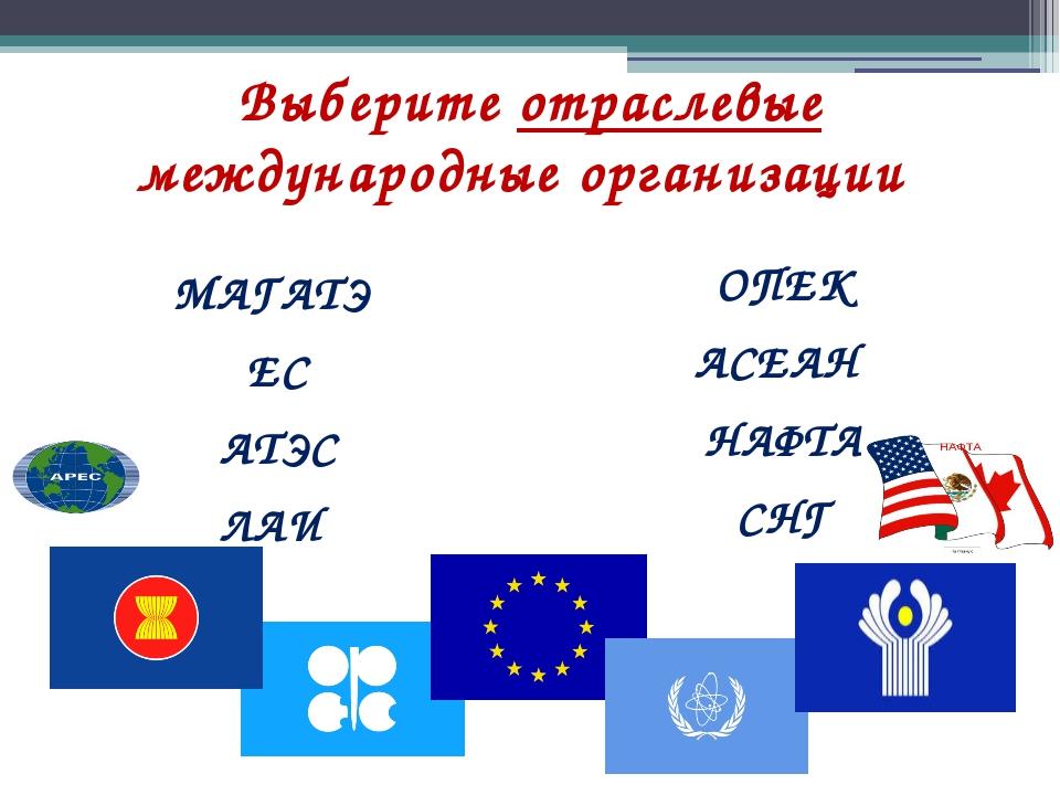 Выберите отраслевые международные организации МАГАТЭ ЕС АТЭС ЛАИ ОПЕК АСЕАН Н...