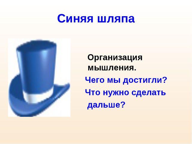 Синяя шляпа Организация мышления. Чего мы достигли? Что нужно сделать дальше?