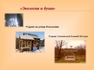 Родник на улице Вольновка Родник Тихвинской Божией Матери «Экология и душа»