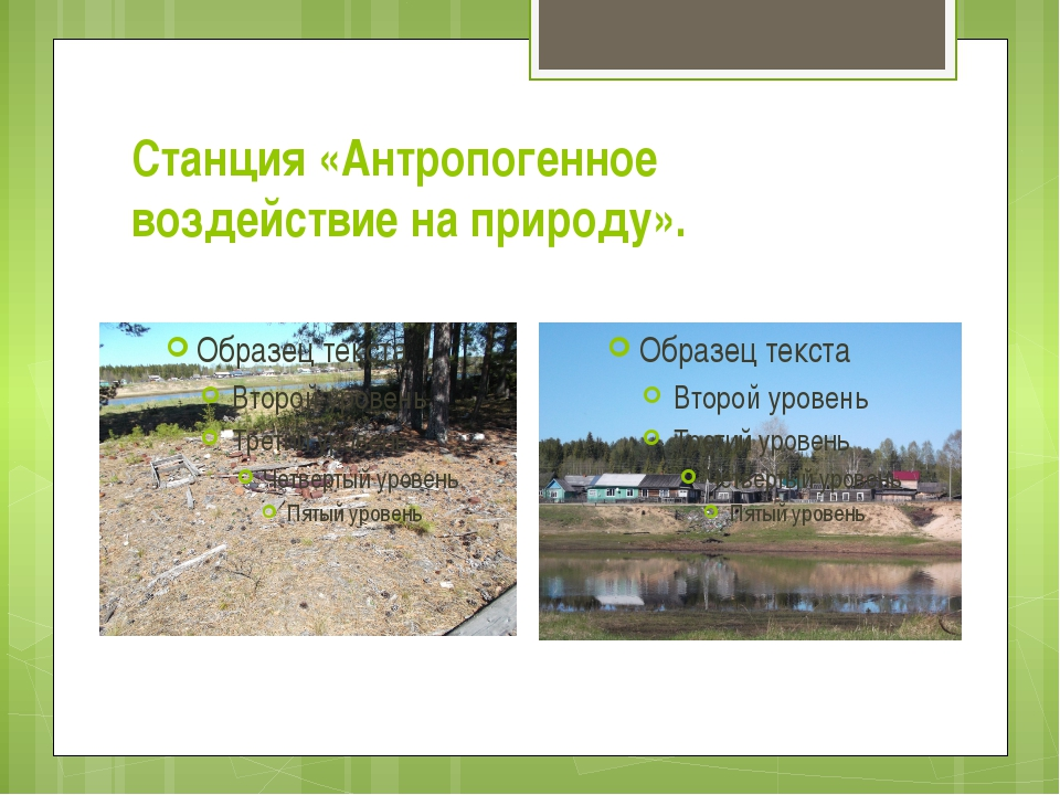 Станция «Антропогенное воздействие на природу».