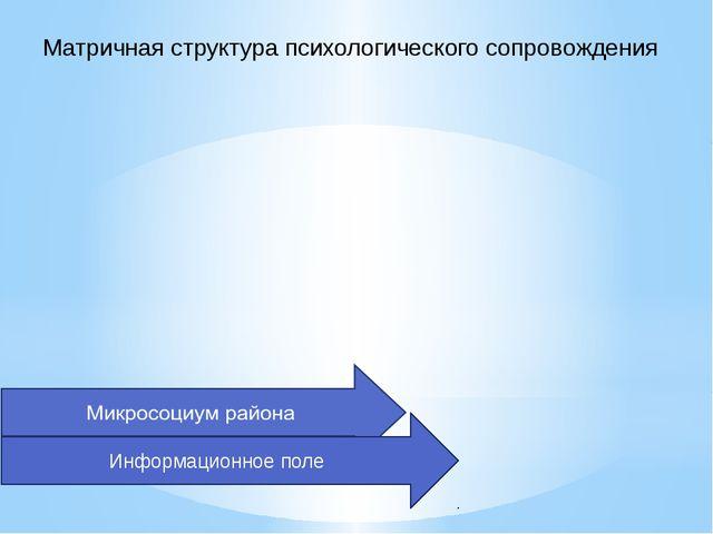 Матричная структура психологического сопровождения Информационное поле
