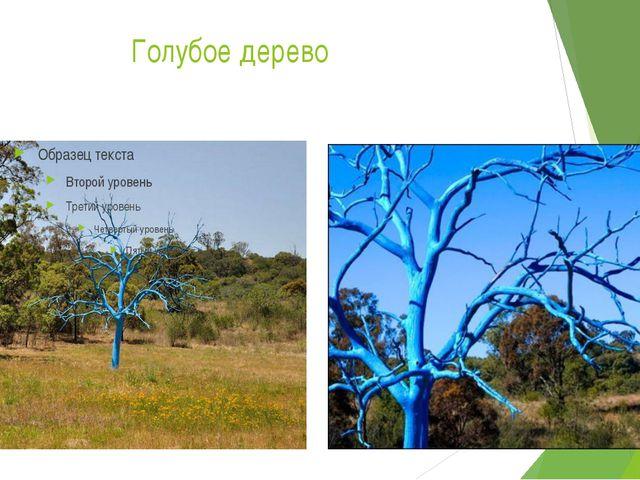 Голубое дерево