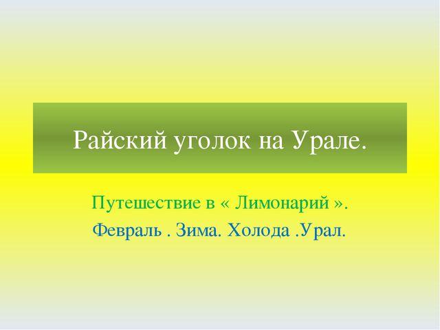 Райский уголок на Урале. Путешествие в « Лимонарий ». Февраль . Зима. Холода...