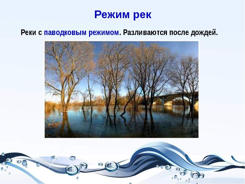 Реки с паводковым режимом. Разливаются после дождей. Режим рек