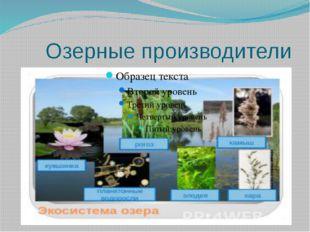 Озерные производители