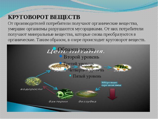 КРУГОВОРОТ ВЕЩЕСТВ От производителей потребители получают органические вещест...