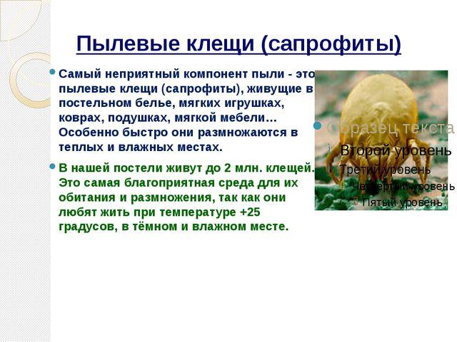 Пылевые клещи (сапрофиты) Самый неприятный компонент пыли - это пылевые клещи...