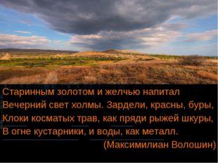Старинным золотом и желчью напитал Вечерний свет холмы. Зардели, красны, буры