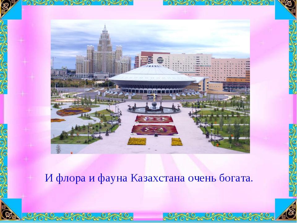 И флора и фауна Казахстана очень богата.