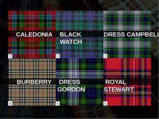 BLACK WATCH BURBERRY DRESS GORDON ROYAL STEWART CALEDONIA DRESS CAMPBELL