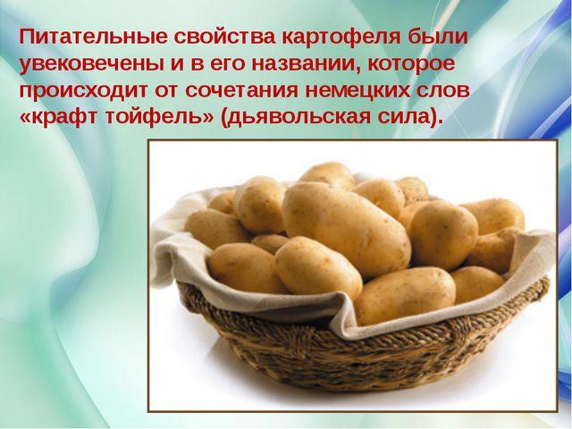 Питательные свойства картофеля были увековечены и в его названии, которое про...