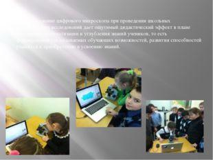 Использование цифрового микроскопа при проведении школьных биологических исс