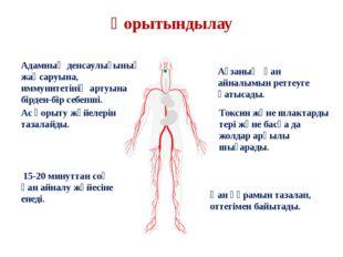 Қорытындылау Адамның денсаулығының жақсаруына, иммунитетінің артуына бірден-б