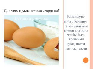 Для чего нужна яичная скорлупа? В скорлупе много кальция , а кальций нам нуже