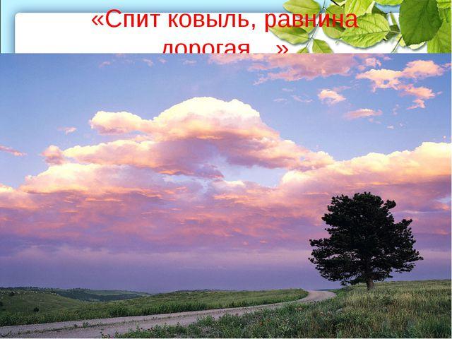 «Спит ковыль, равнина дорогая…»