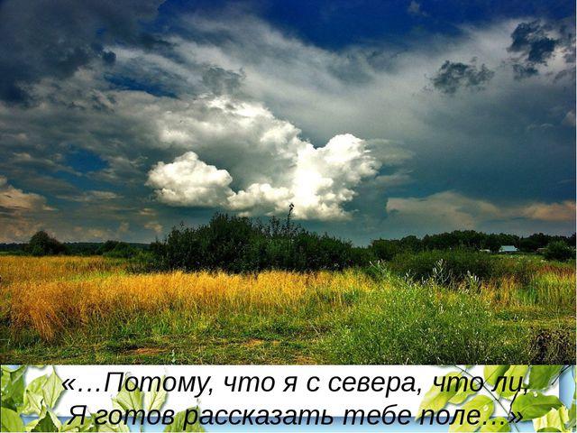 «…Потому, что я с севера, что ли, Я готов рассказать тебе поле…»
