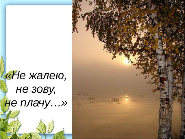 «Не жалею, не зову, не плачу…»