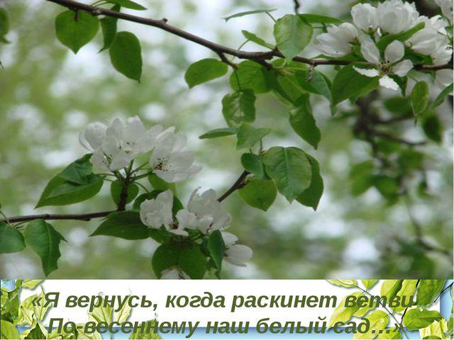 «Я вернусь, когда раскинет ветви По-весеннему наш белый сад…»