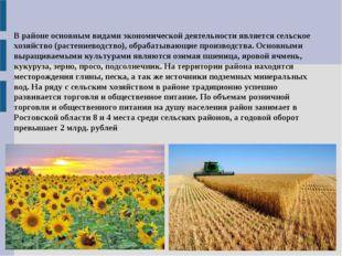В районе основным видами экономической деятельности является сельское хозяйст