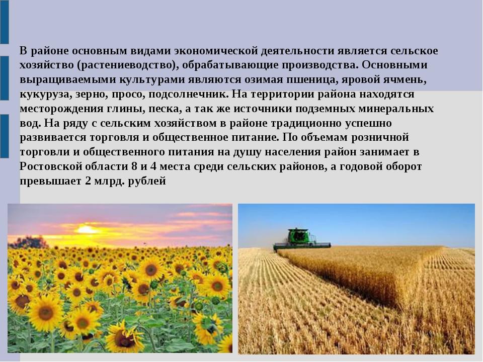 В районе основным видами экономической деятельности является сельское хозяйст...