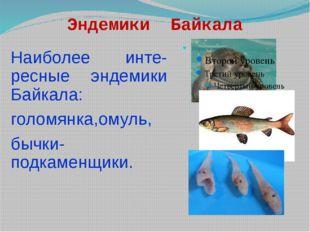 Эндемики Байкала Наиболее инте-ресные эндемики Байкала: голомянка,омуль, бычк