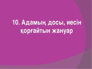 10. Адамың досы, иесін қорғайтын жануар