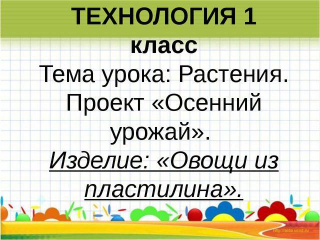 ТЕХНОЛОГИЯ 1 класс Темаурока:Растения. Проект «Осенний урожай». Изделие:...