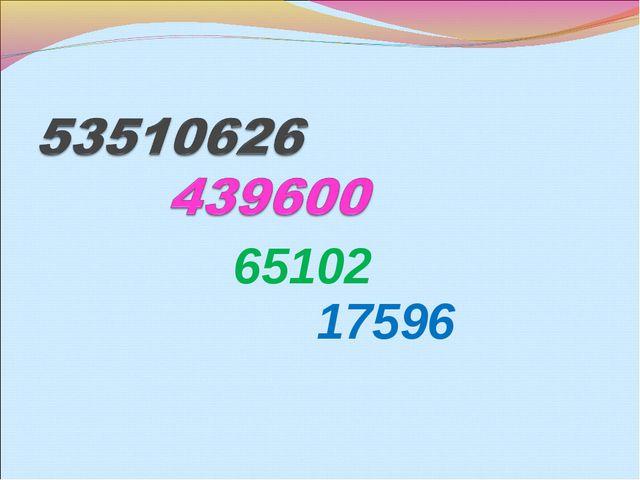 65102 17596