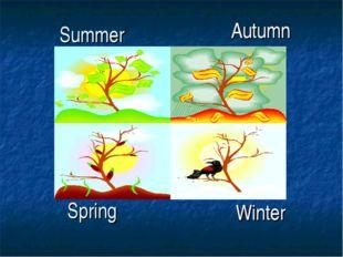 Summer Spring Autumn Winter