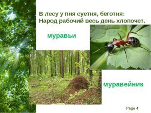 В лесу у пня суетня, беготня: Народ рабочий весь день хлопочет. муравьи мурав