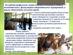 Вся работа профильного лагеря состоит из комплекса учебных, воспитательных,