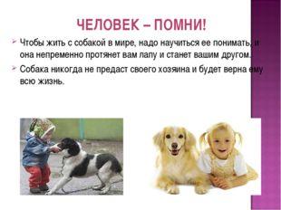 ЧЕЛОВЕК – ПОМНИ! Чтобы жить с собакой в мире, надо научиться ее понимать, и о