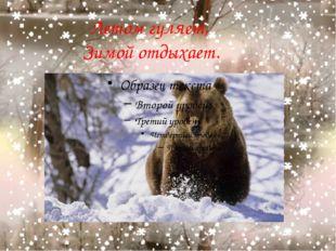 Летом гуляет, Зимой отдыхает.