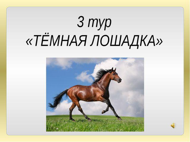 3 тур «ТЁМНАЯ ЛОШАДКА»