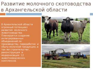 Развитие молочного скотоводства в Архангельской области В Архангельской облас