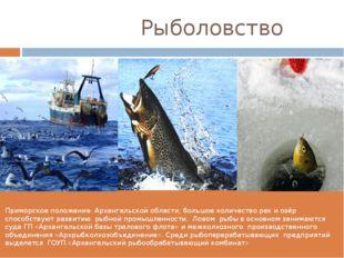 Рыболовство Приморское положение Архангельской области, большое количество р