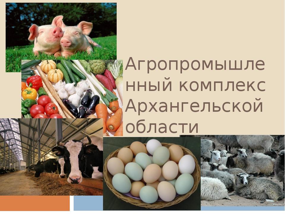 Агропромышленный комплекс Архангельской области