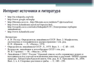 Интернет источники и литература http://ru.wikipedia.org/wiki http://www.googl