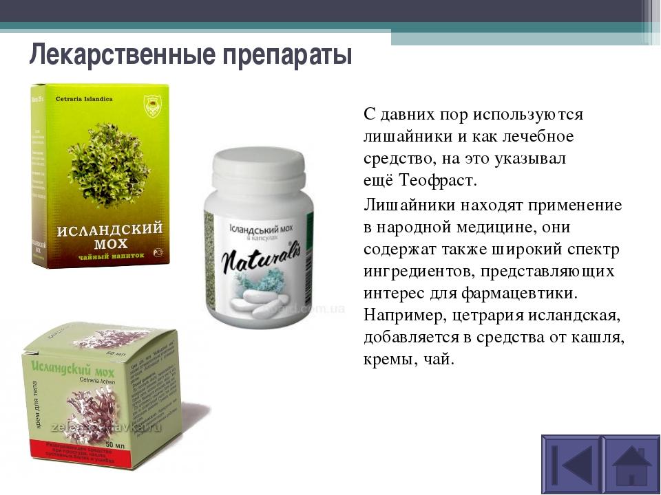 Лекарственные препараты С давних пор используются лишайники и каклечебное ср...