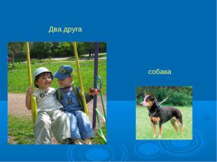 собака Два друга