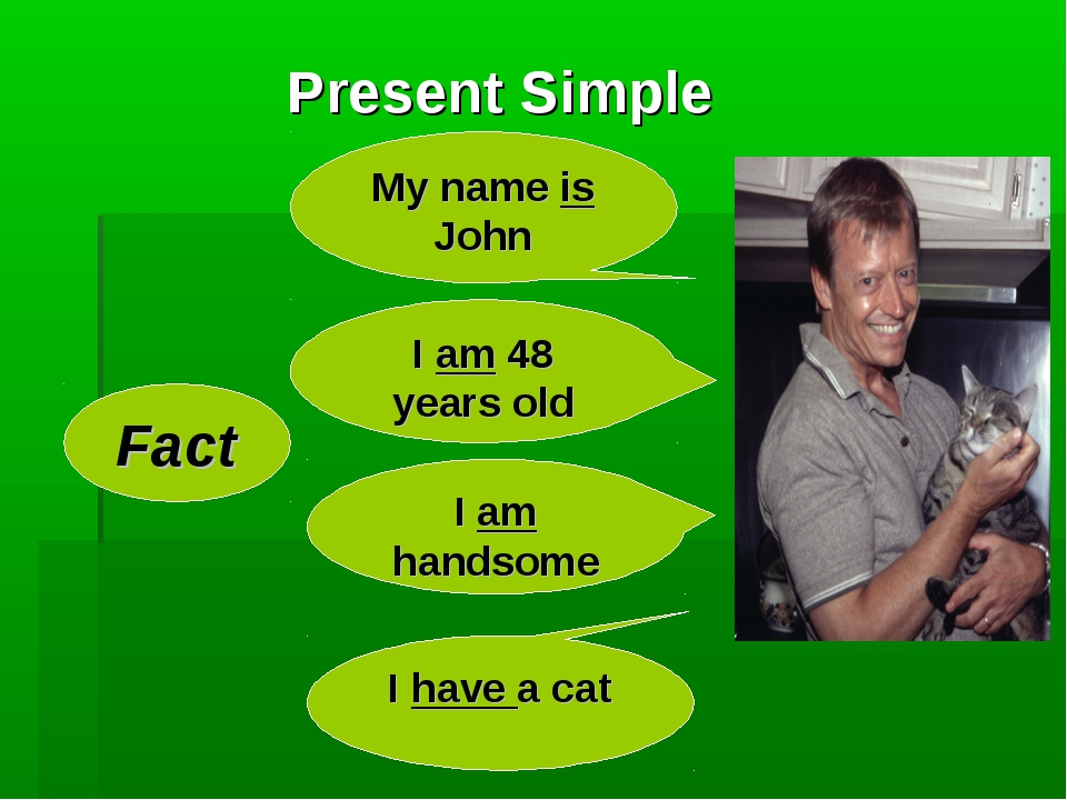 Present Simple Fact My name is John I am 48 years old I am handsome I have a...