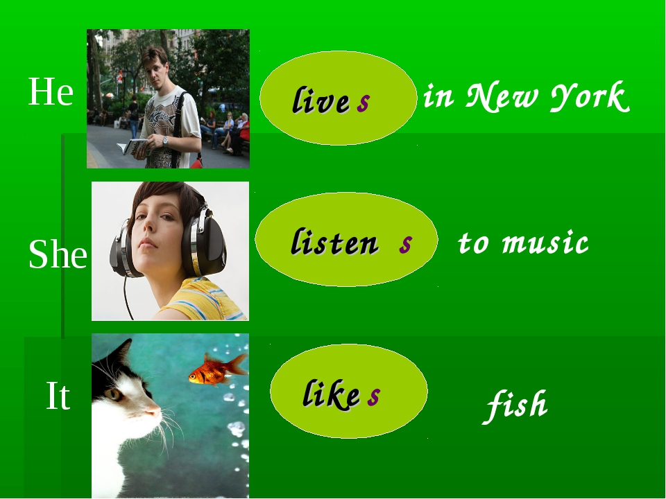 He It She live s listen s like s in New York to music fish