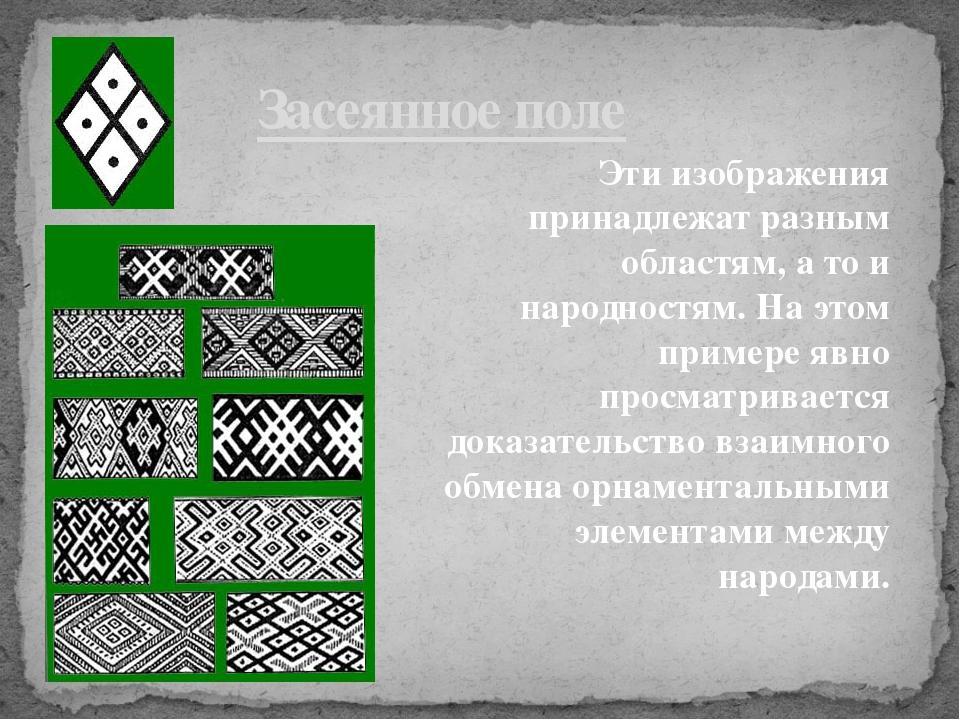 Засеянное поле Эти изображения принадлежат разным областям, а то и народностя...