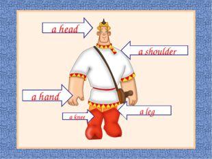 а shoulder а hand а leg a head а knee