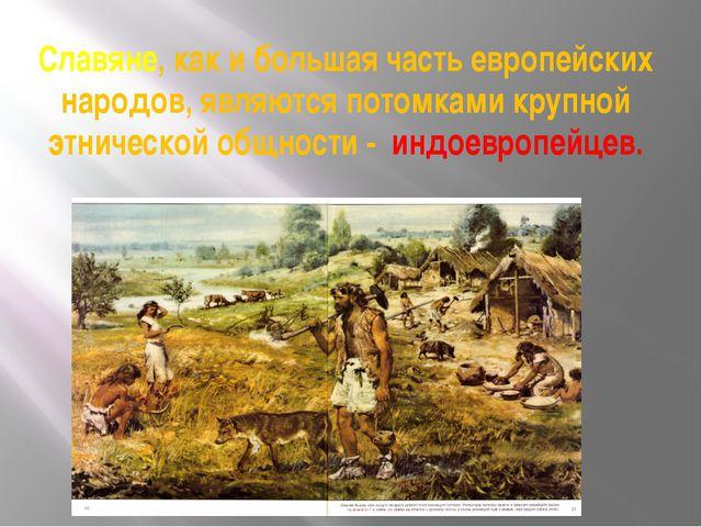Славяне, как и большая часть европейских народов, являются потомками крупной...