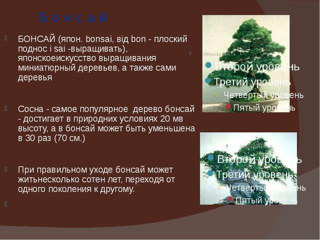 Б о н с а й БОНСАЙ (япон. bonsai, від bon - плоский поднос і sai -выращивать)...