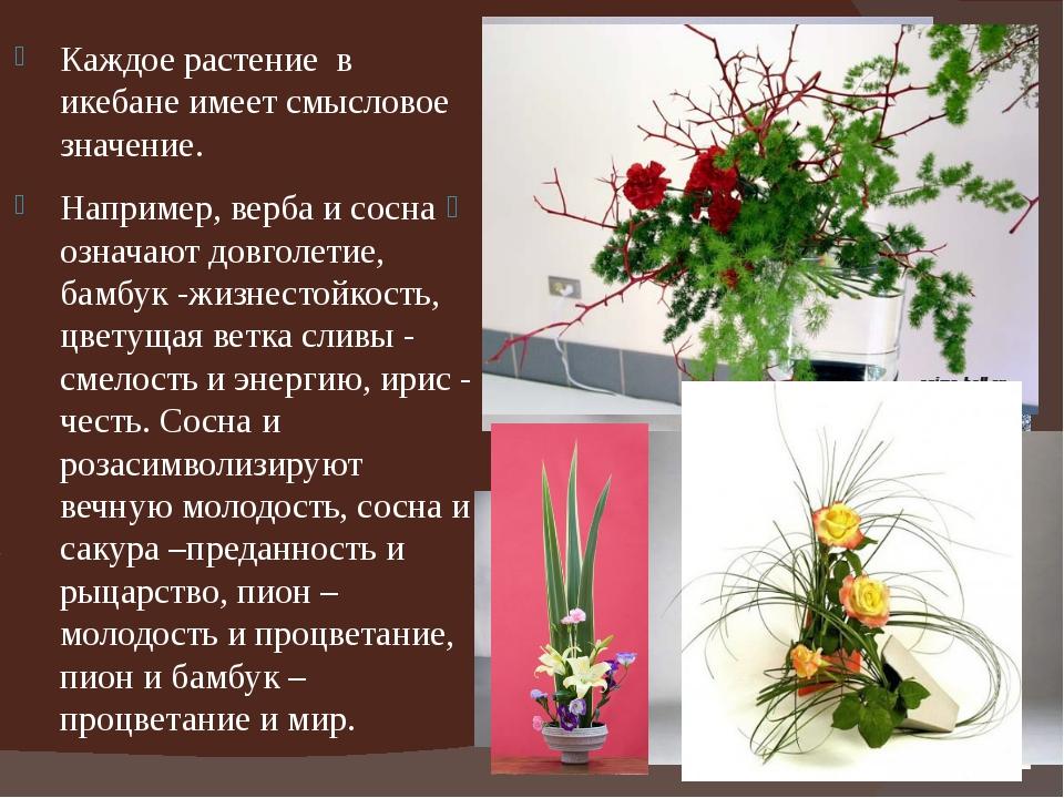 Каждое растение в икебане имеет смысловое значение. Например, верба и сосна о...