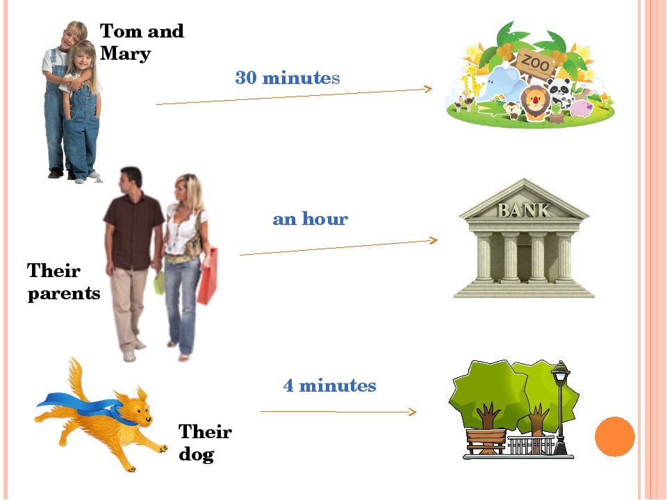 Tom and Mary Their parents Their dog 30 minutes an hour 4 minutes